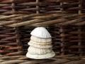 seahore-basket
