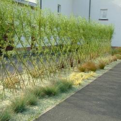auchrannie-fence2lg